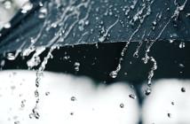 lluvia web